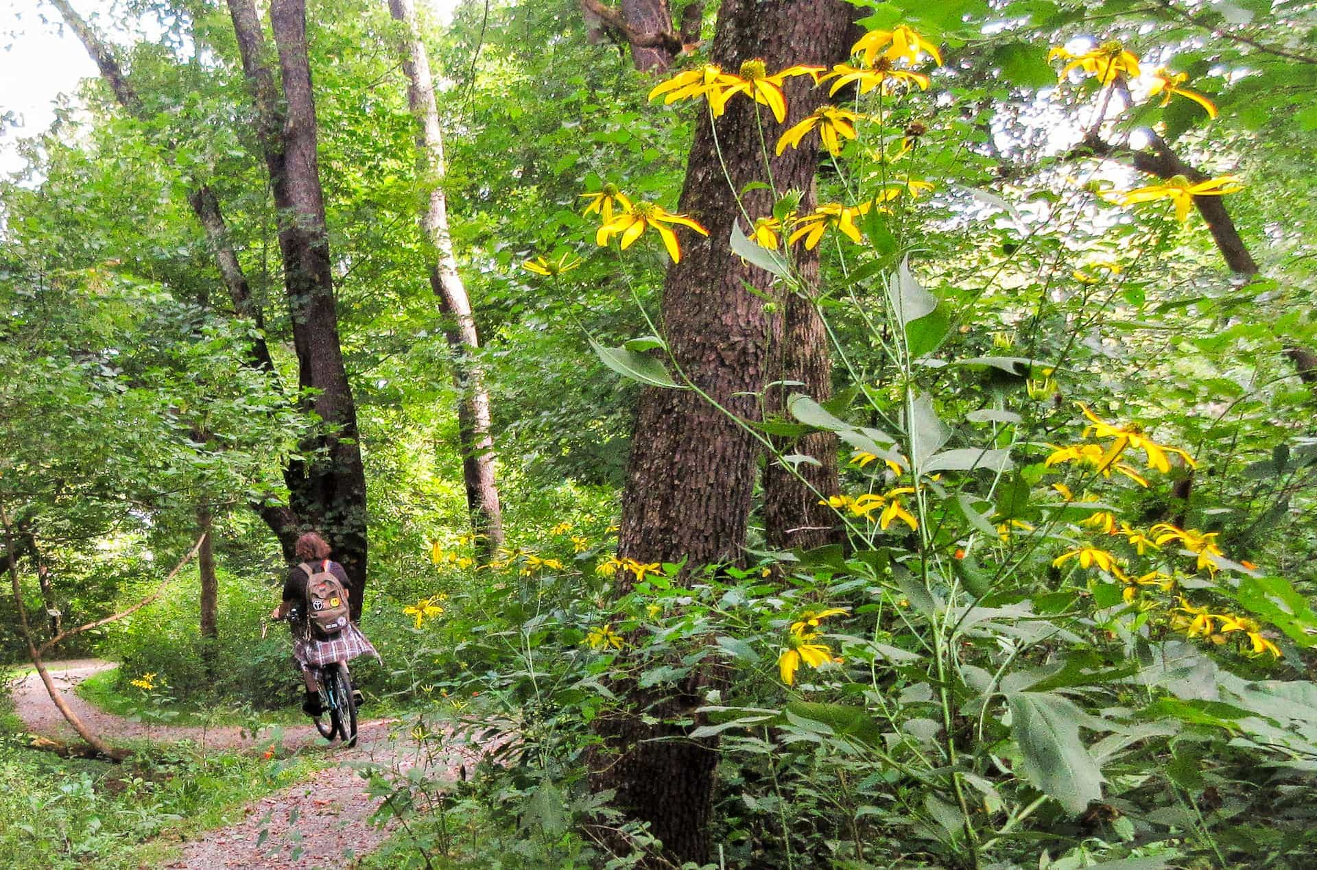Community invited to explore origins of the Nature Park, Learning Trail Saturday at the Riverwalk