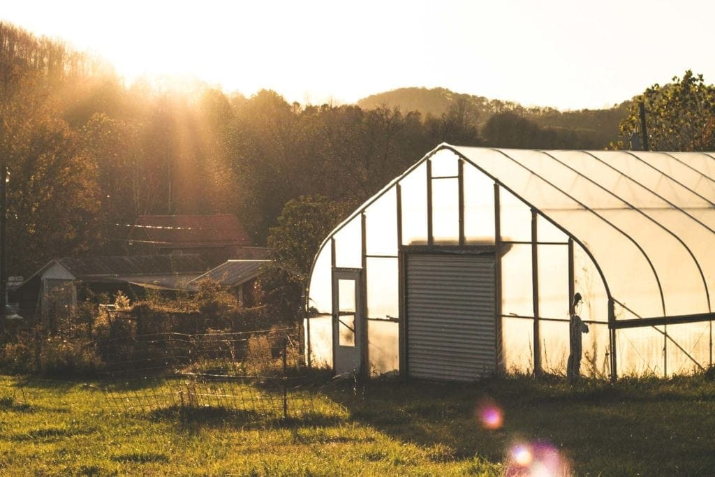 Stone Lakes Farm (Photo by Rachel Poling)