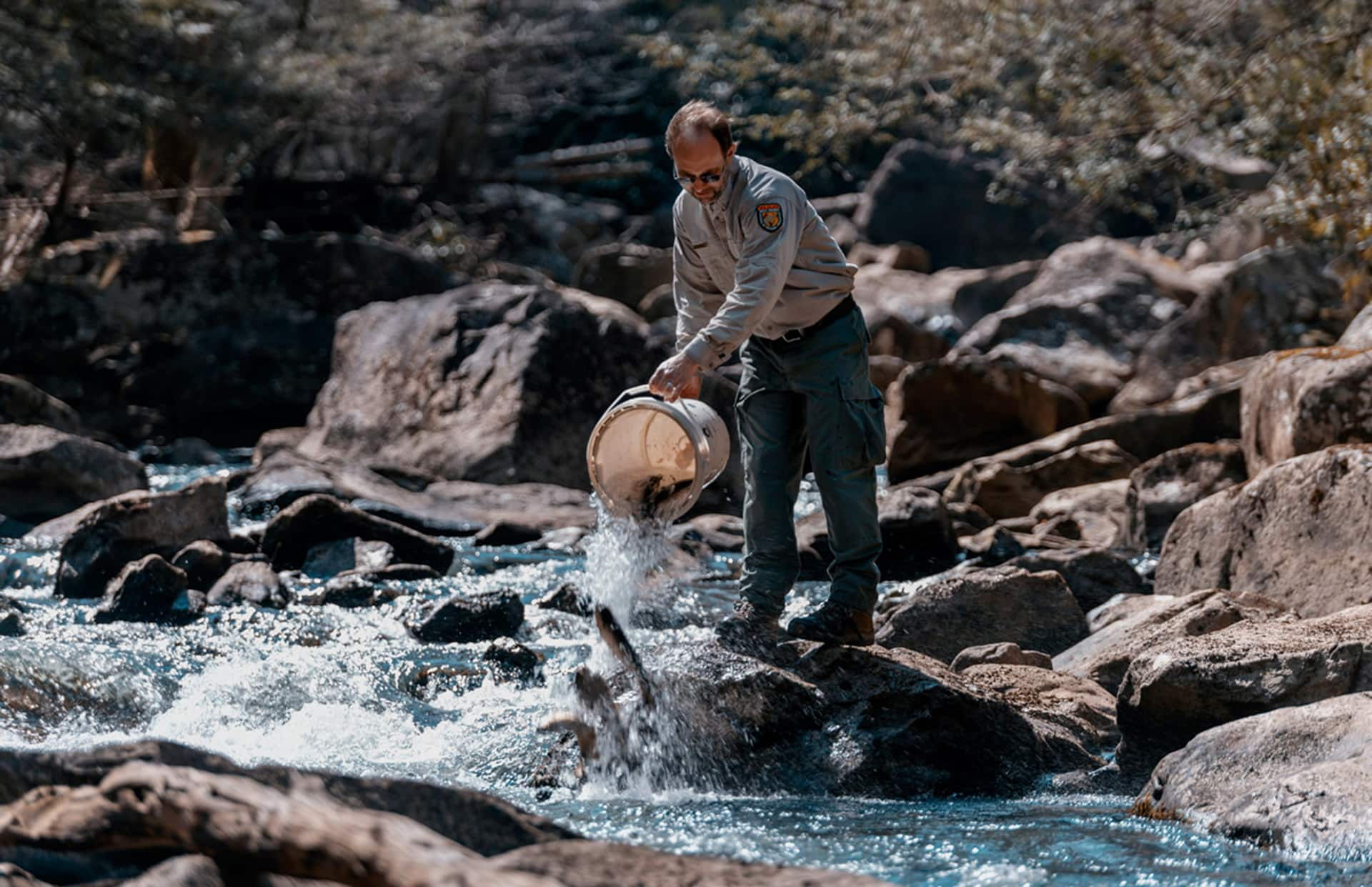Gov. Justice announces additional improvements to fall trout stocking method; directs WVDNR to add lakes to stocking list