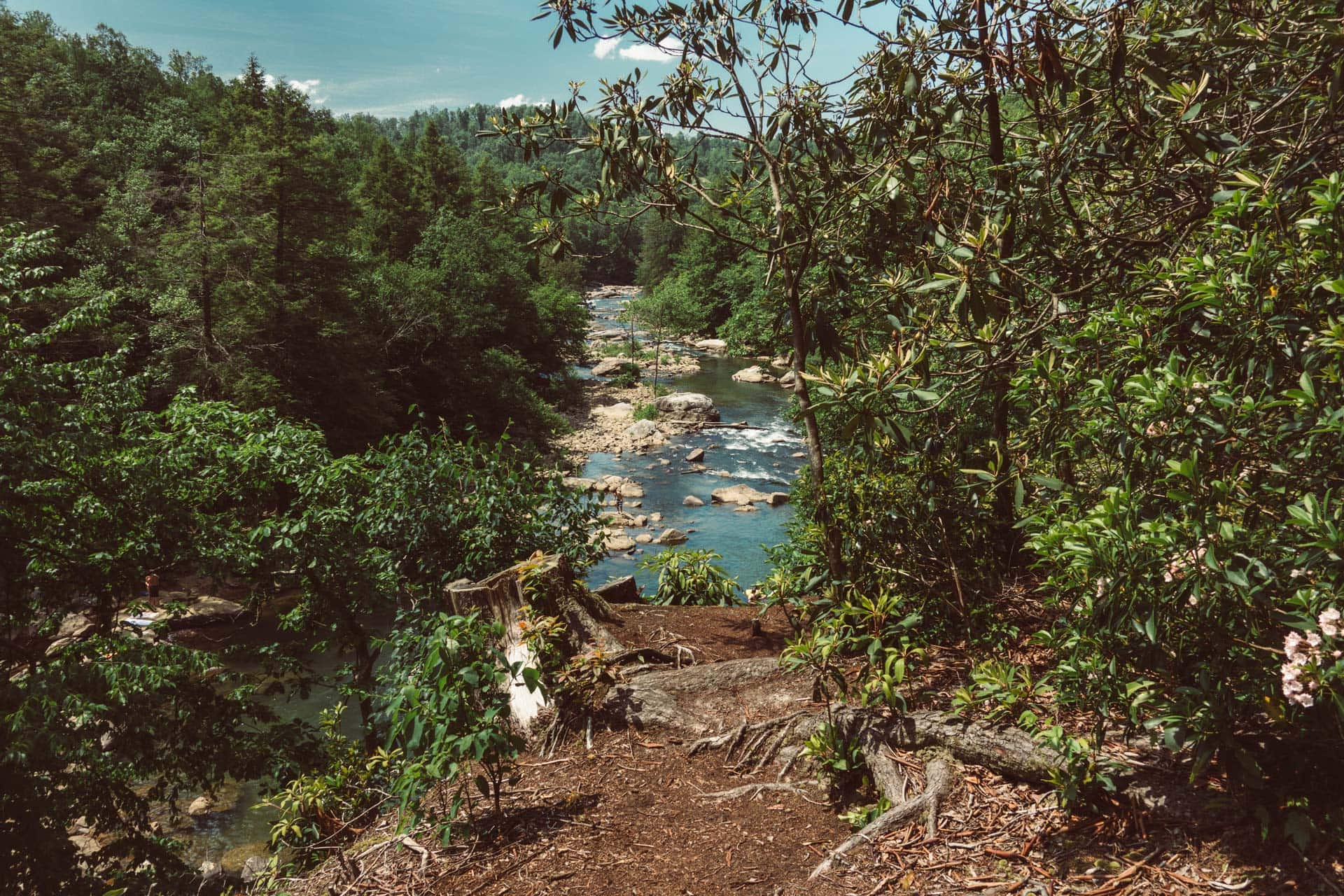 A hiking trail at Audra State Park looks down over the Middle Fork River.