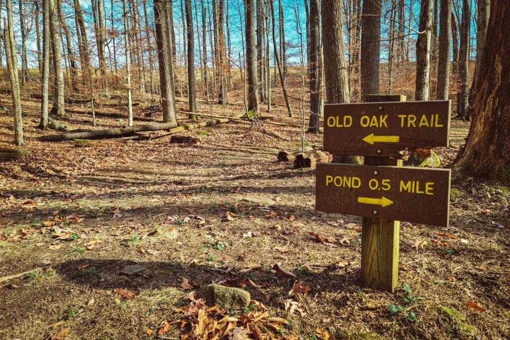 Old Oak Trail at the West Virginia Wildlife Center