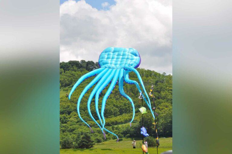 """A large """"octopus"""" kite being flown at Canaan Valley Resort."""